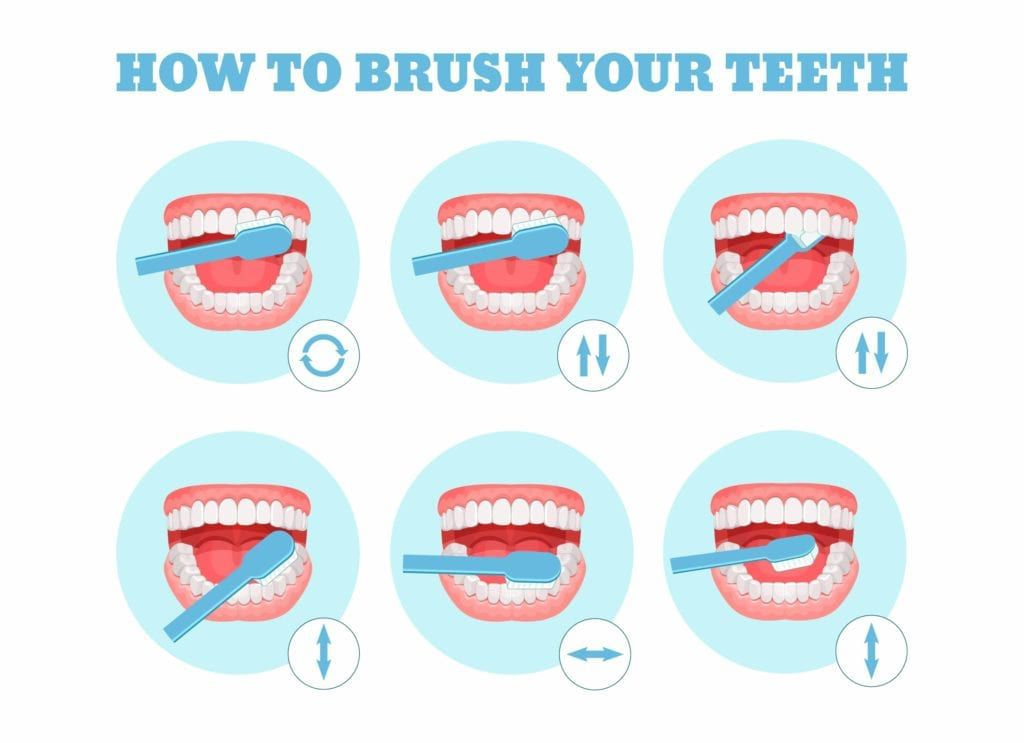 Diagram showing how to brush teeth